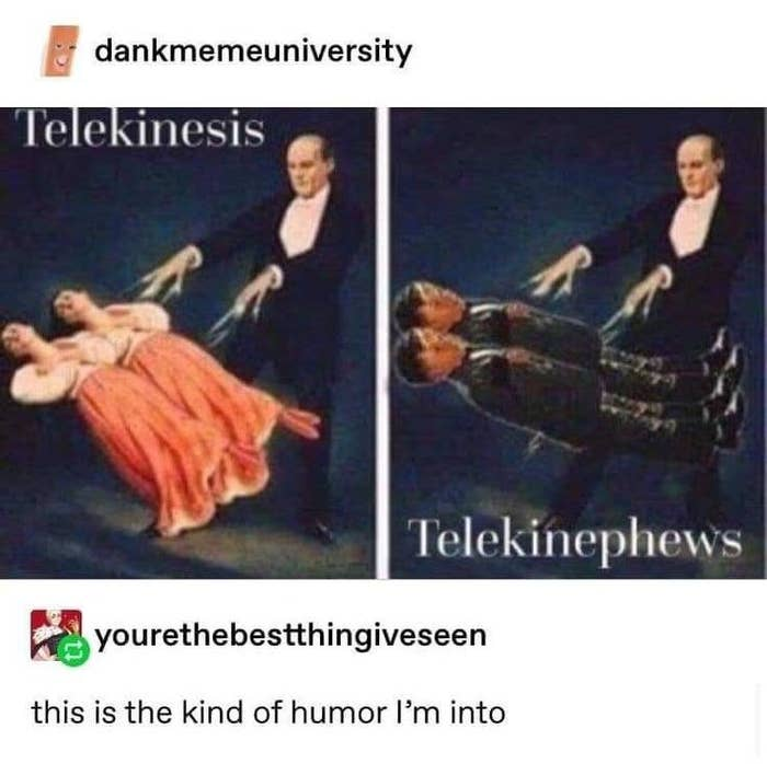 """On the left, a painting of a magician making two girls float using magic, labeled """"telekinesis."""" On the right, the same painting but with two boys, labeled """"telekinephews"""""""