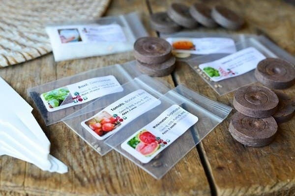 Various seeds from the Urban Organic Gardener subscription