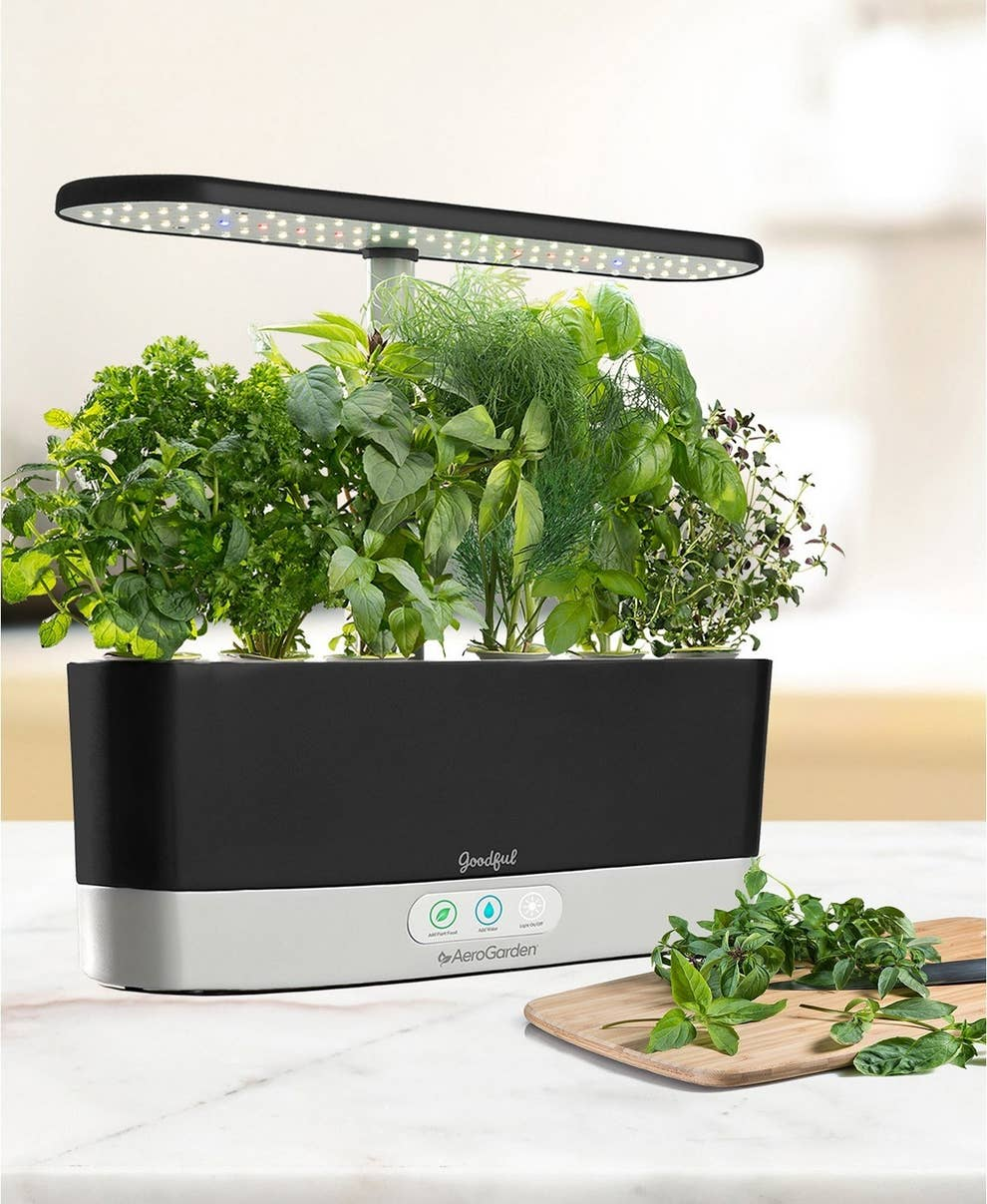 The Aerogarden harvest is about a foot long and about 2 inches wide. It has 3 buttons and green leaves sprouting from the top with an LED lamp sticking up from the bottom and towering over the leaves.
