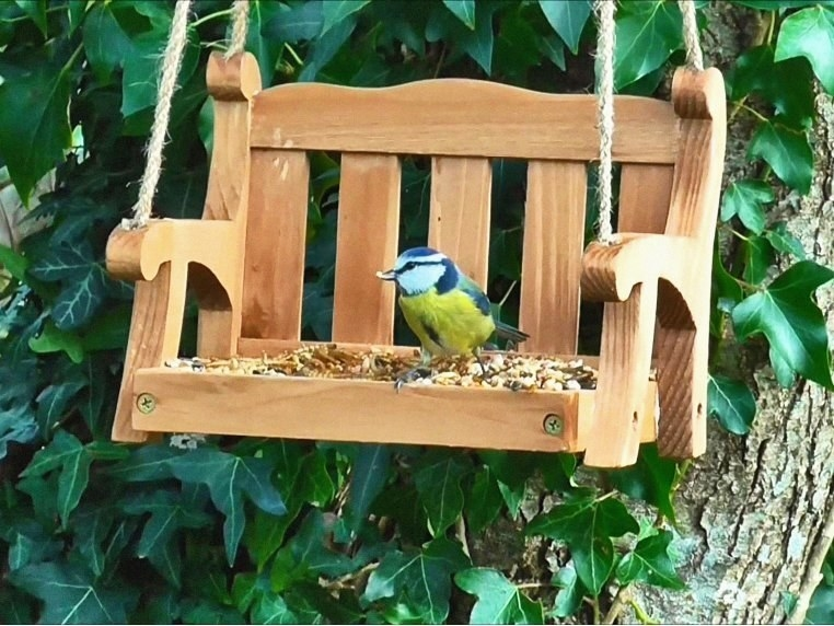 mini porch swing with birdseed on the seat and a bird sitting on it