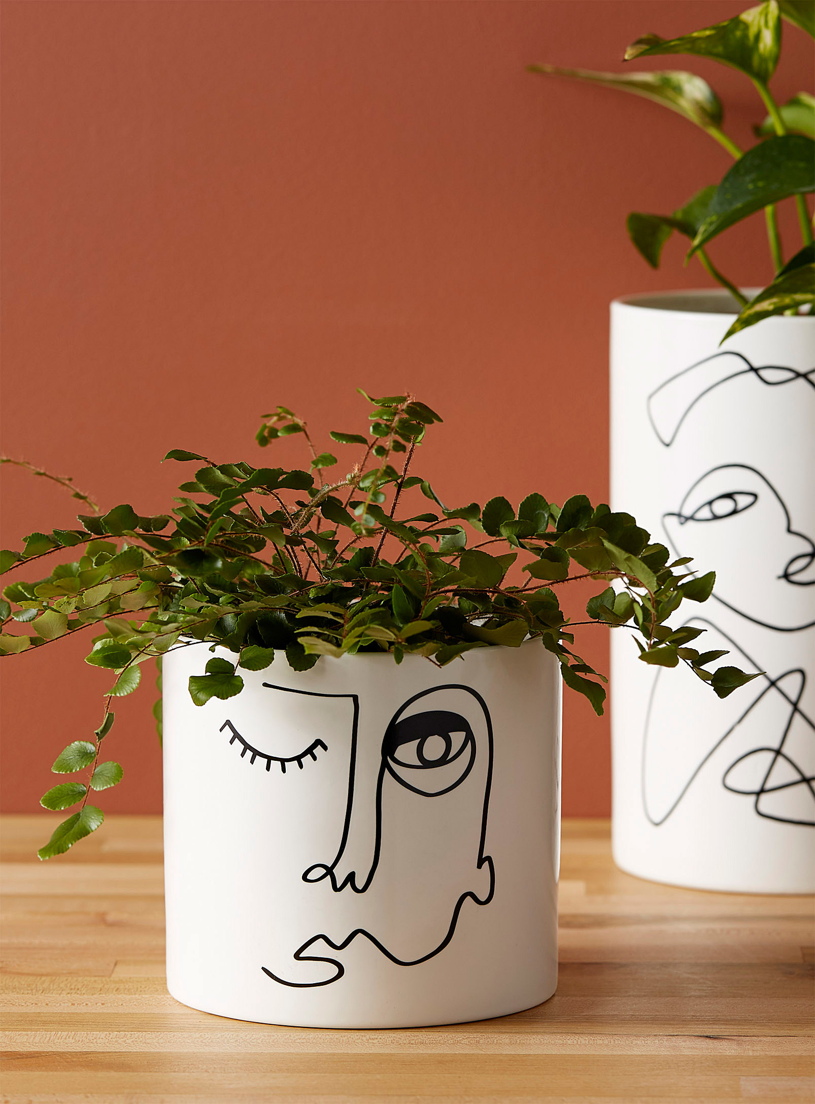 A plain cylindrical planter with an artsy face drawn on it
