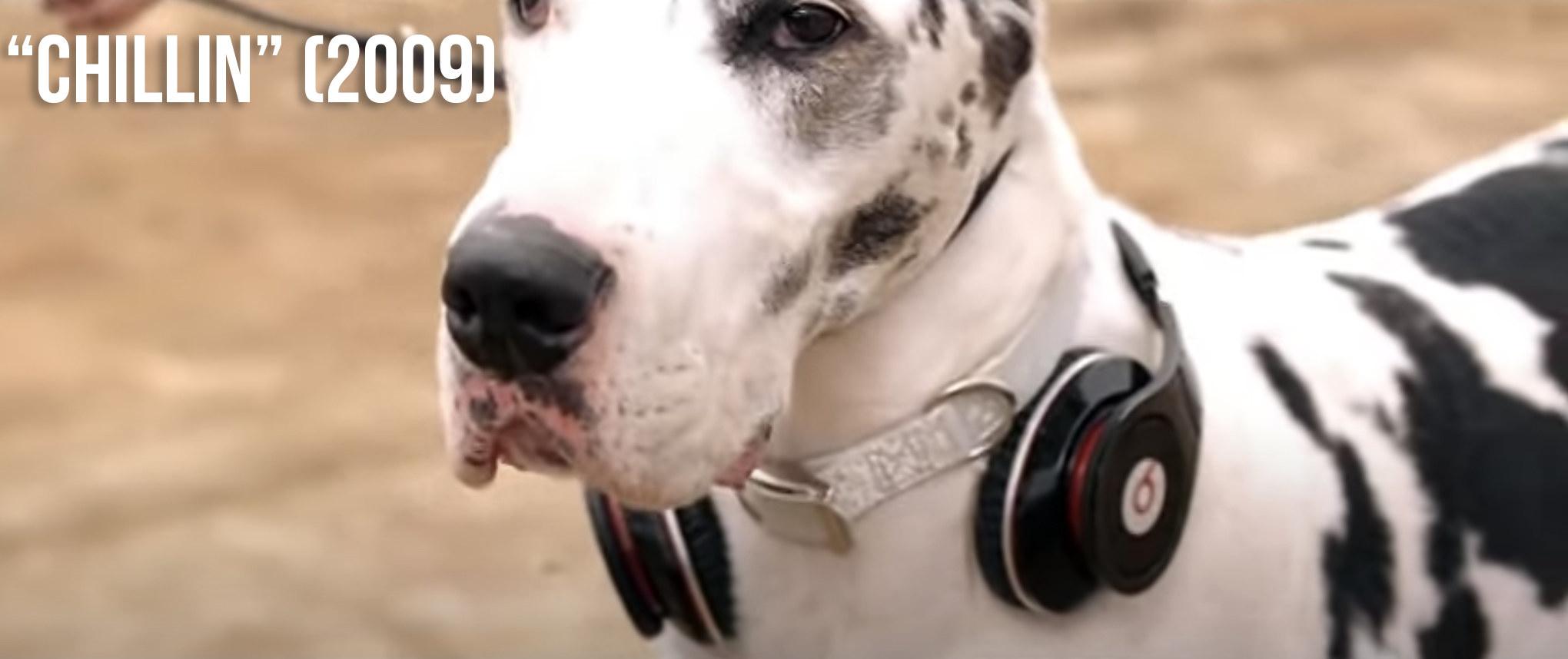 Either Lava or Rumpus wearing Beats headphones around their neck