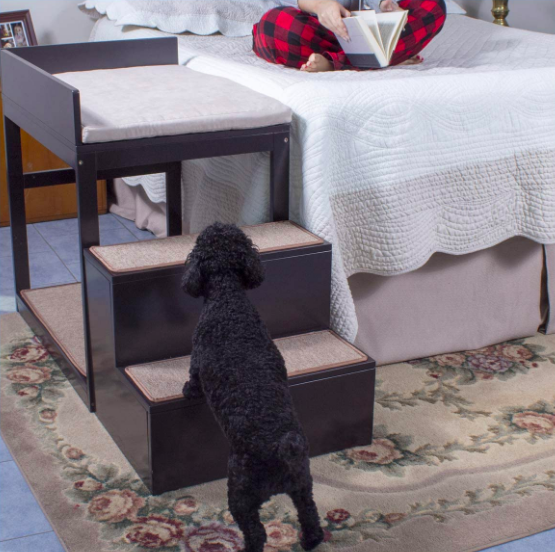 A dog walking up the two steps to the top half of the bunk bed. The bed is placed beside their owner's bed, giving them an easy way to get on and off their human's bed and letting the dog sleep beside them at night.