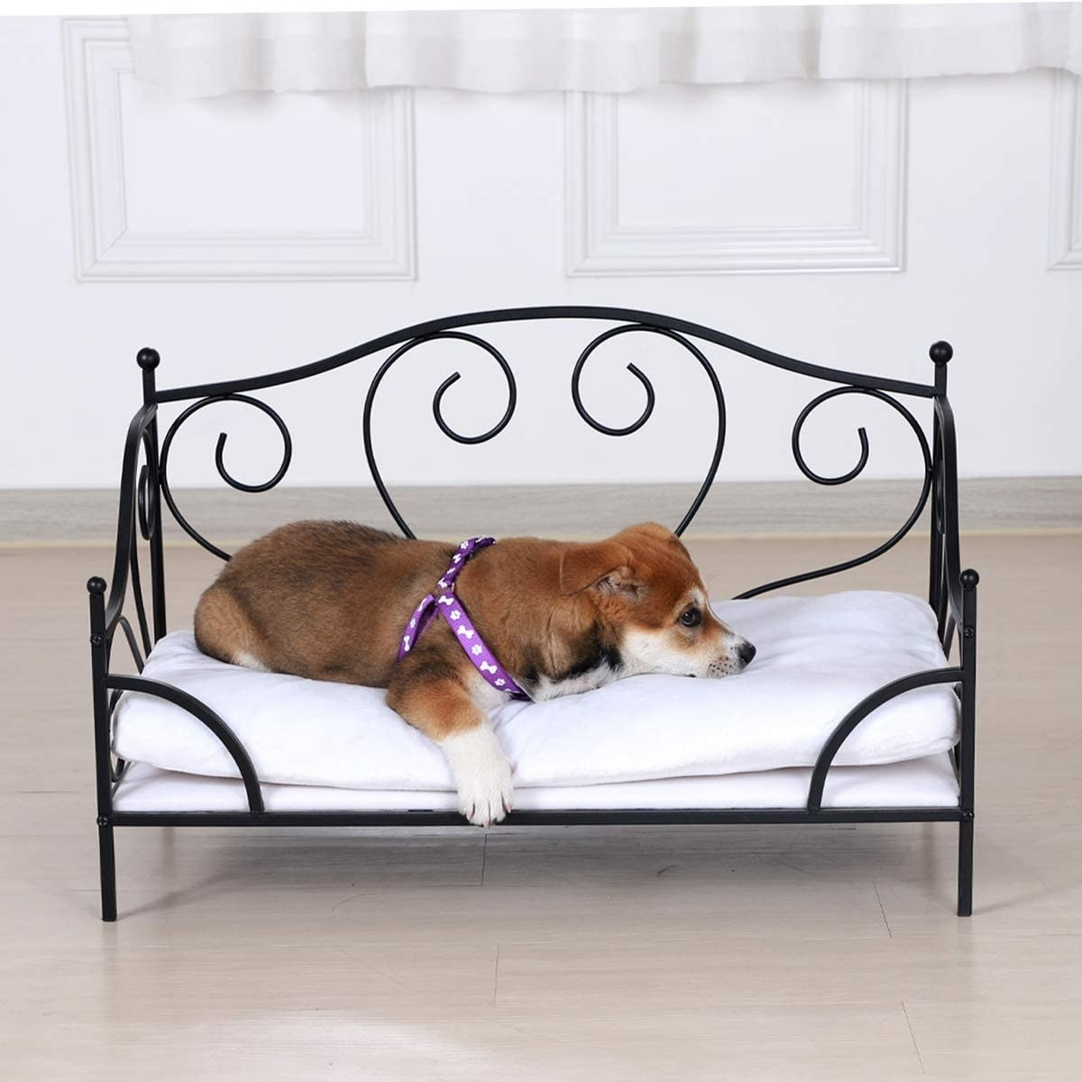A product shot of the curved metal bed frame that looks like a human daybed in miniature. There is a puppy laying across the padded pillow.