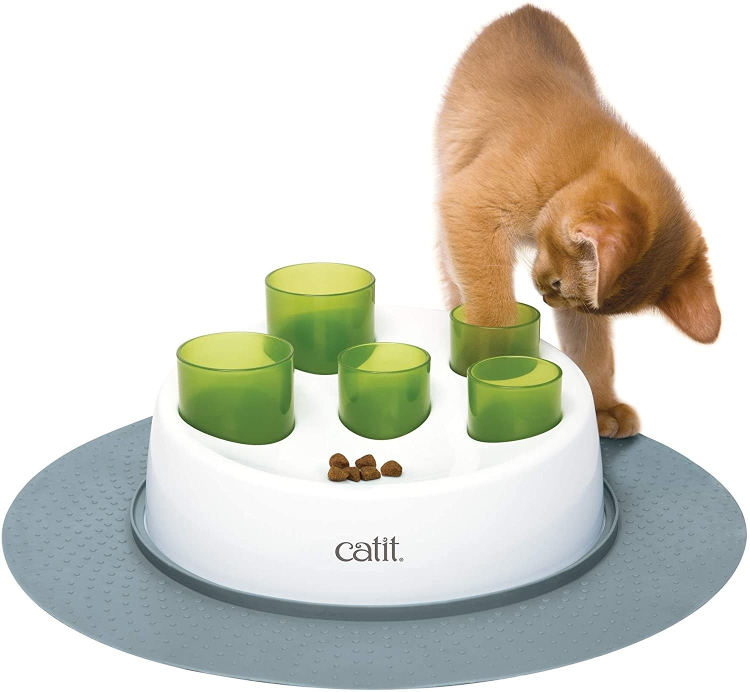 a kitten with their paw in one of the five green cylinders placed in a white circular holder