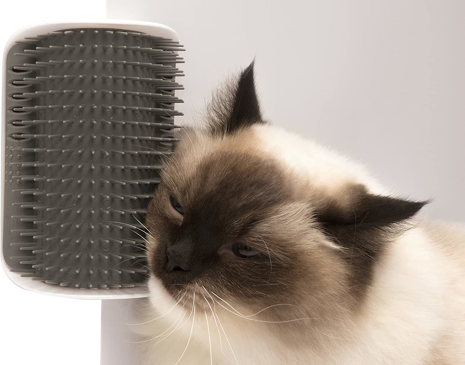 a fluffy cat brushing their face up against the toy that looks like a mounted hair brush