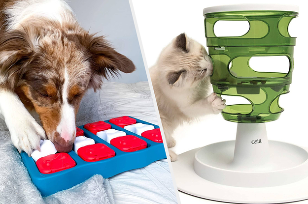 33 Pet Toys On Amazon That People Actually Swear By