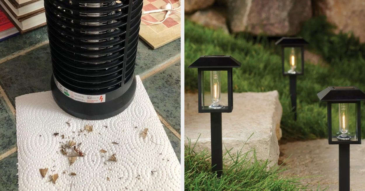 19 Practical Things To Buy For Your Yard