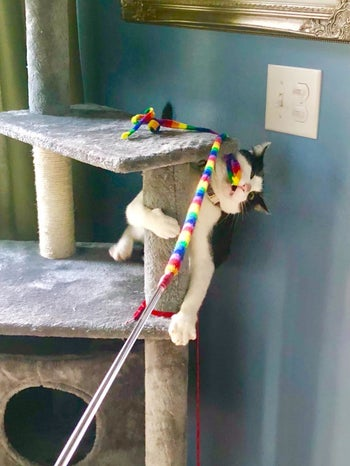 Reviewer photo of their cat in a cat tree playing with the ribbon