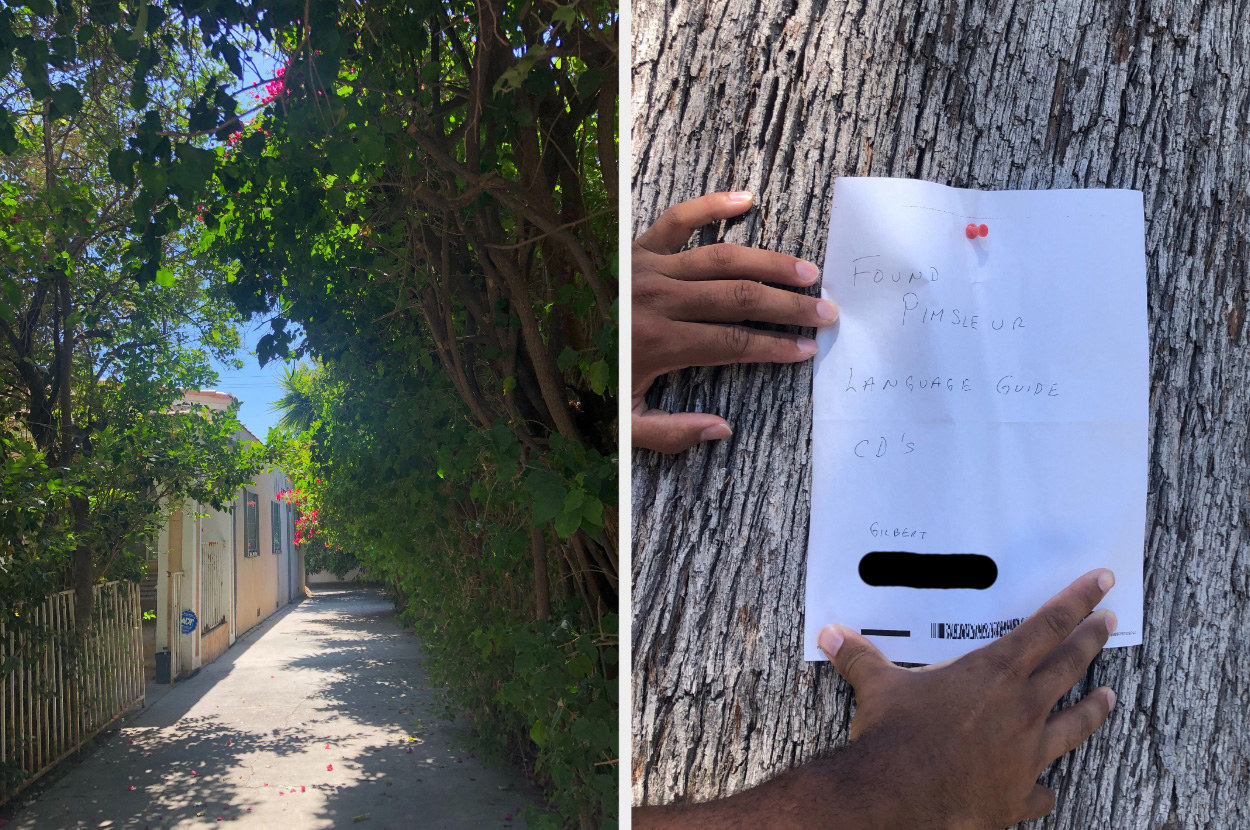 "A split screen: Alleyway with lots of greenery on the left and a piece of paper pinned to a tree that says ""Found pimsleur language guide CD's"" on the right."