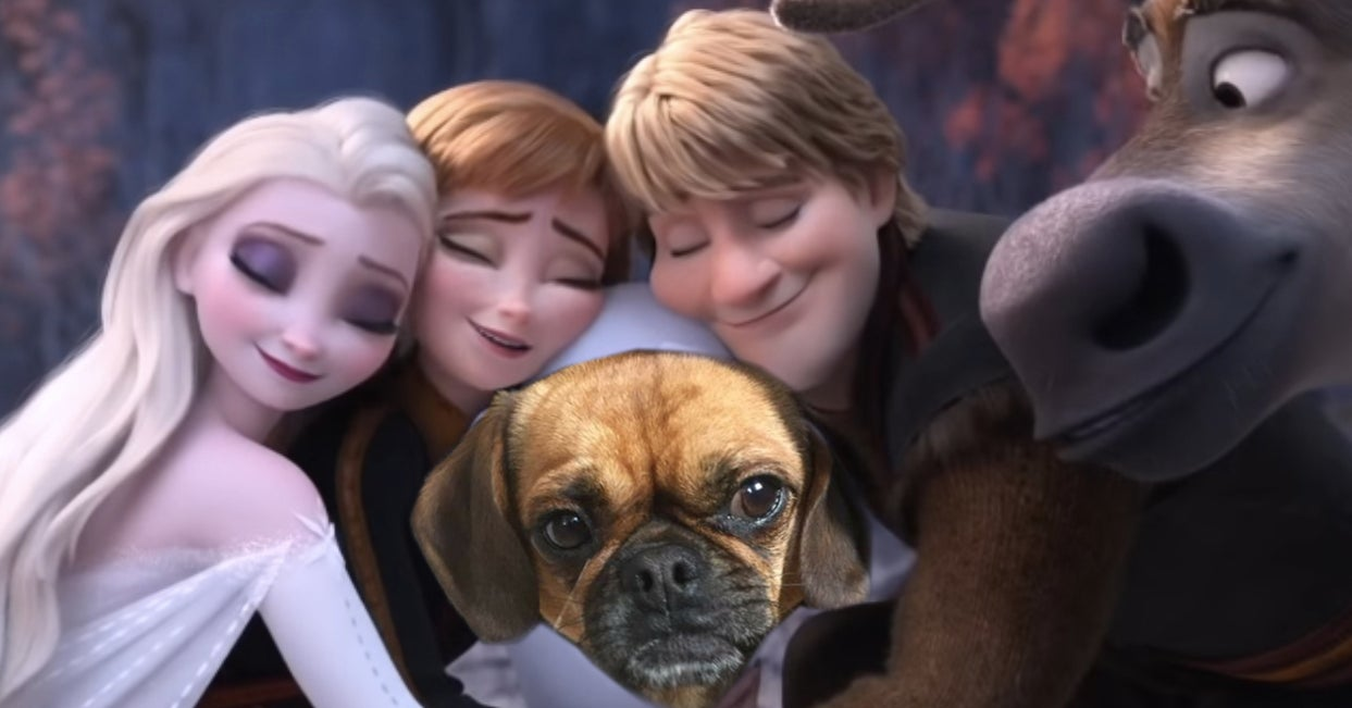 """Choose Some Pictures Of My Dog, Buddy, To See Which \""""Frozen 2\"""" Character You Are - buzzfeed"""