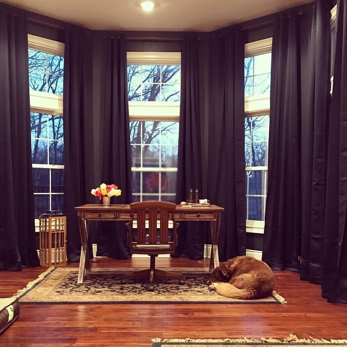 two sets of the curtains in navy blue hanging from floor to ceiling