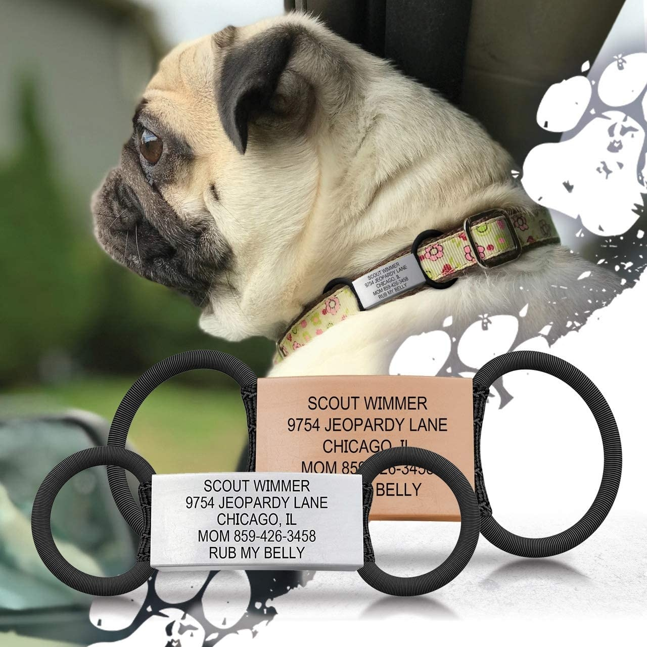A metal engraved pet ID tag with rubber bands that slide onto a collar so they don't hang or make a jingling noise