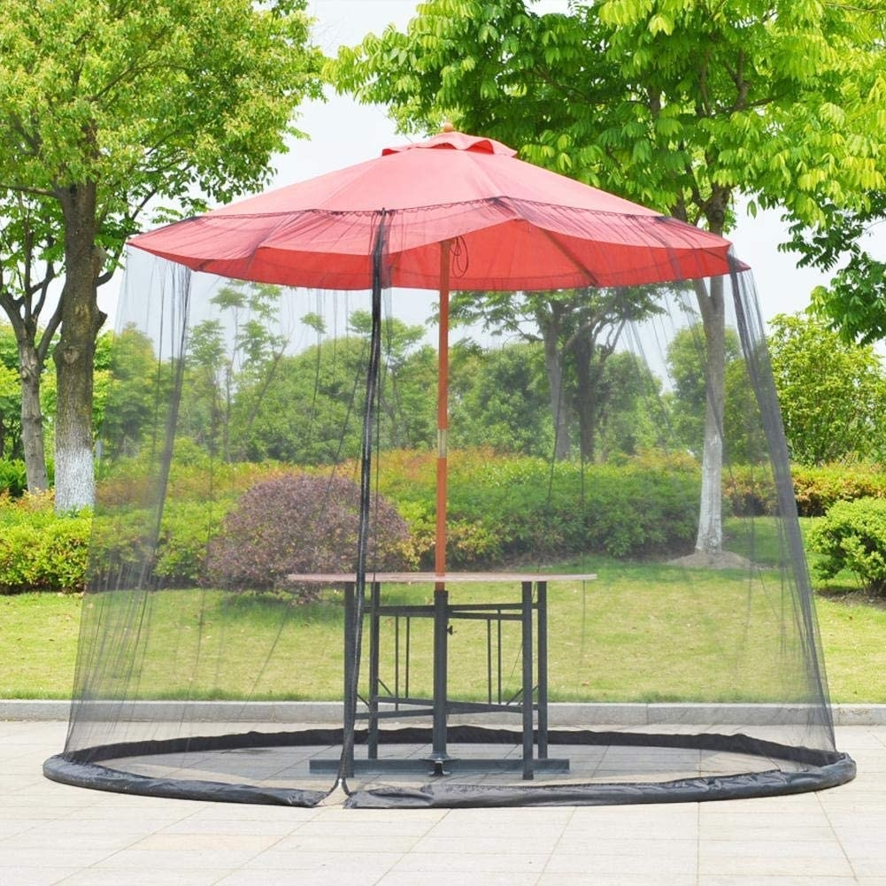 A mosquito net covers a table big enough for several people