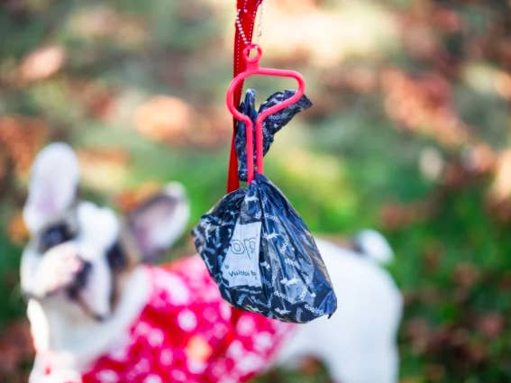 loop-like keychain attachment to dog leash that holds a dog poo bag