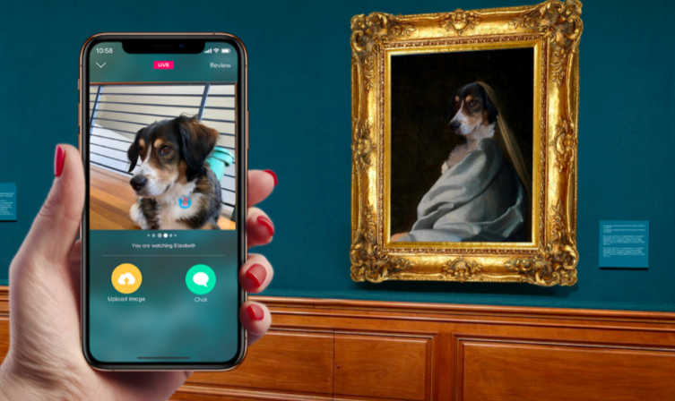 hand holds up phone with photo of dog on zazzle app in front of framed portrait of same dog but in style of Vermeer's Study of a Young Woman