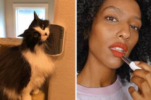 On the left, reviewer's cat uses self-grooming toy on wall. On the right, model applies Glossier lipstick in a red shade