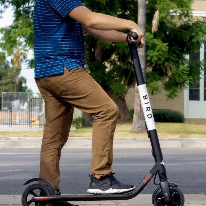 A model on a BIRD scooter