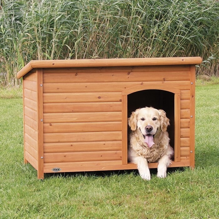 Wood outdoor dog house