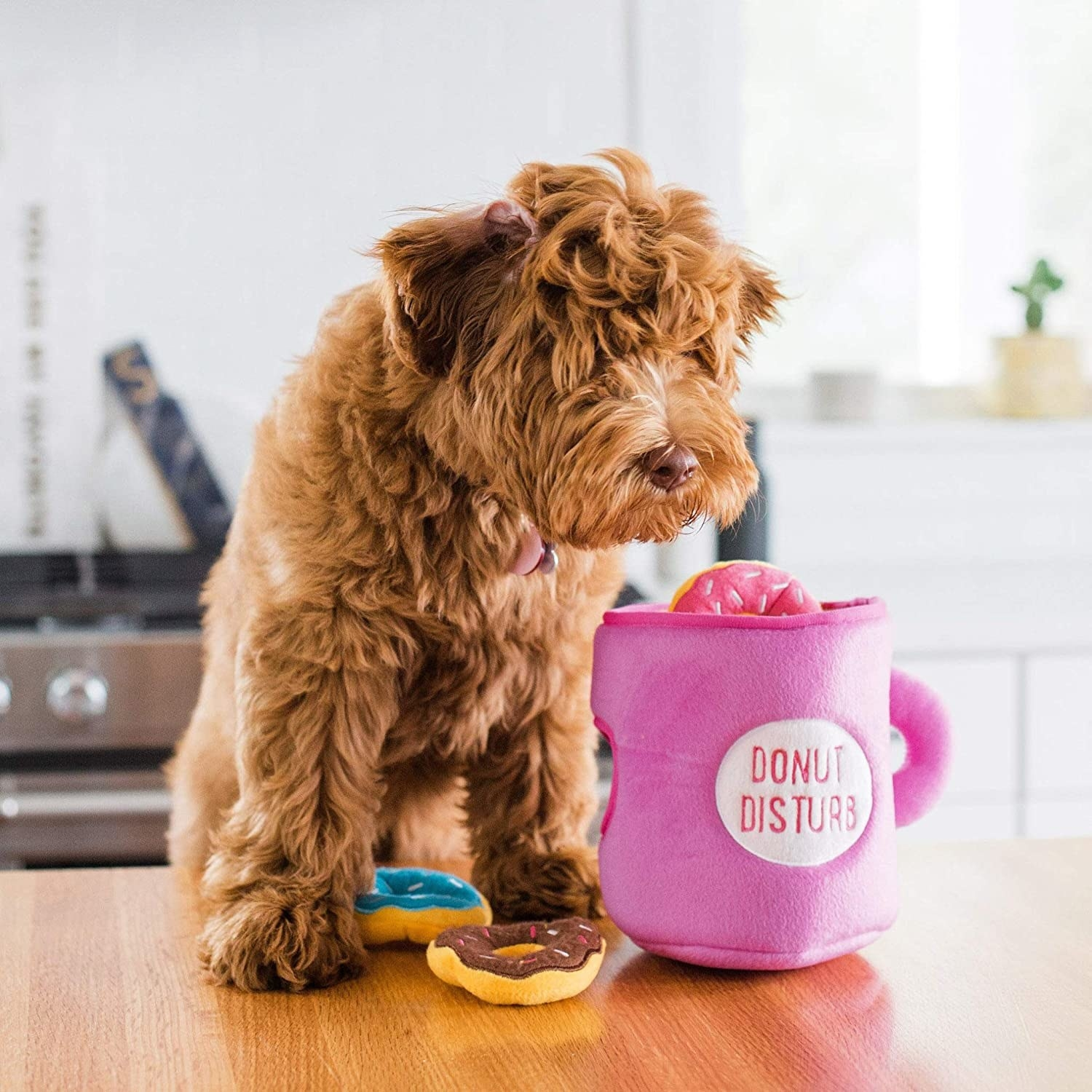 "dog next to a pink chew toy cup labeled ""donut disturb"" with three donuts"