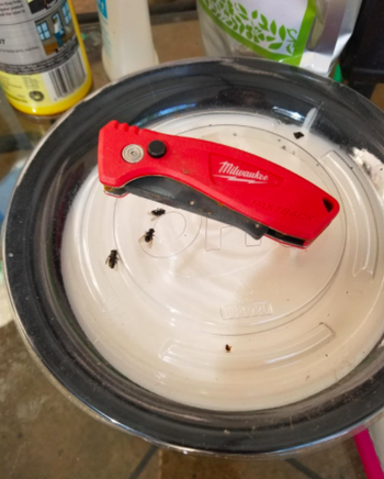 Reviewer shows garbage guard shielding lid from big flies on their trash can