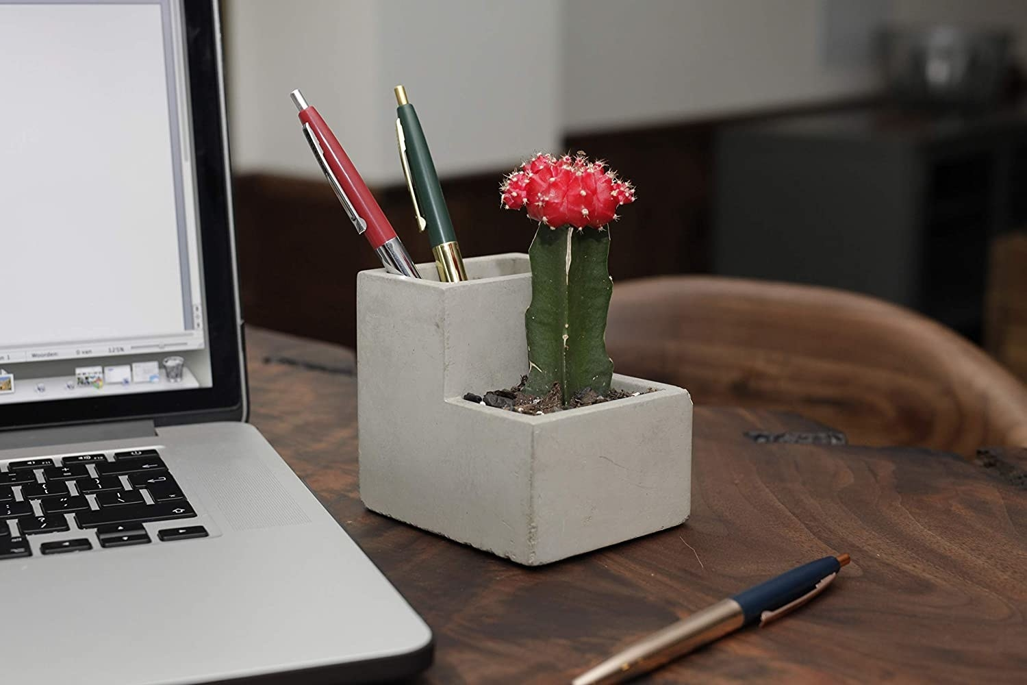 The planter sits on a desk with a small cactus in the front and two pens in the back section