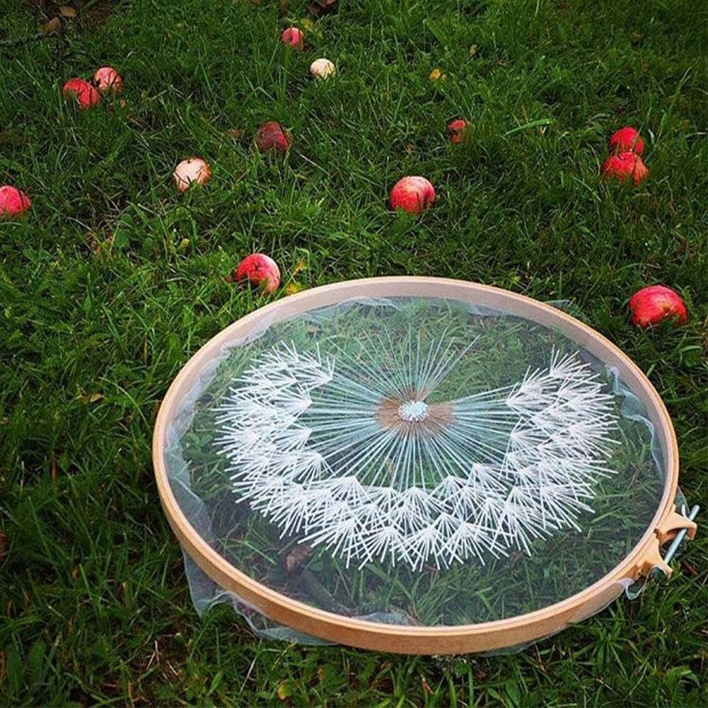 An embroidery hoop with a completed dandelion on sheer fabric