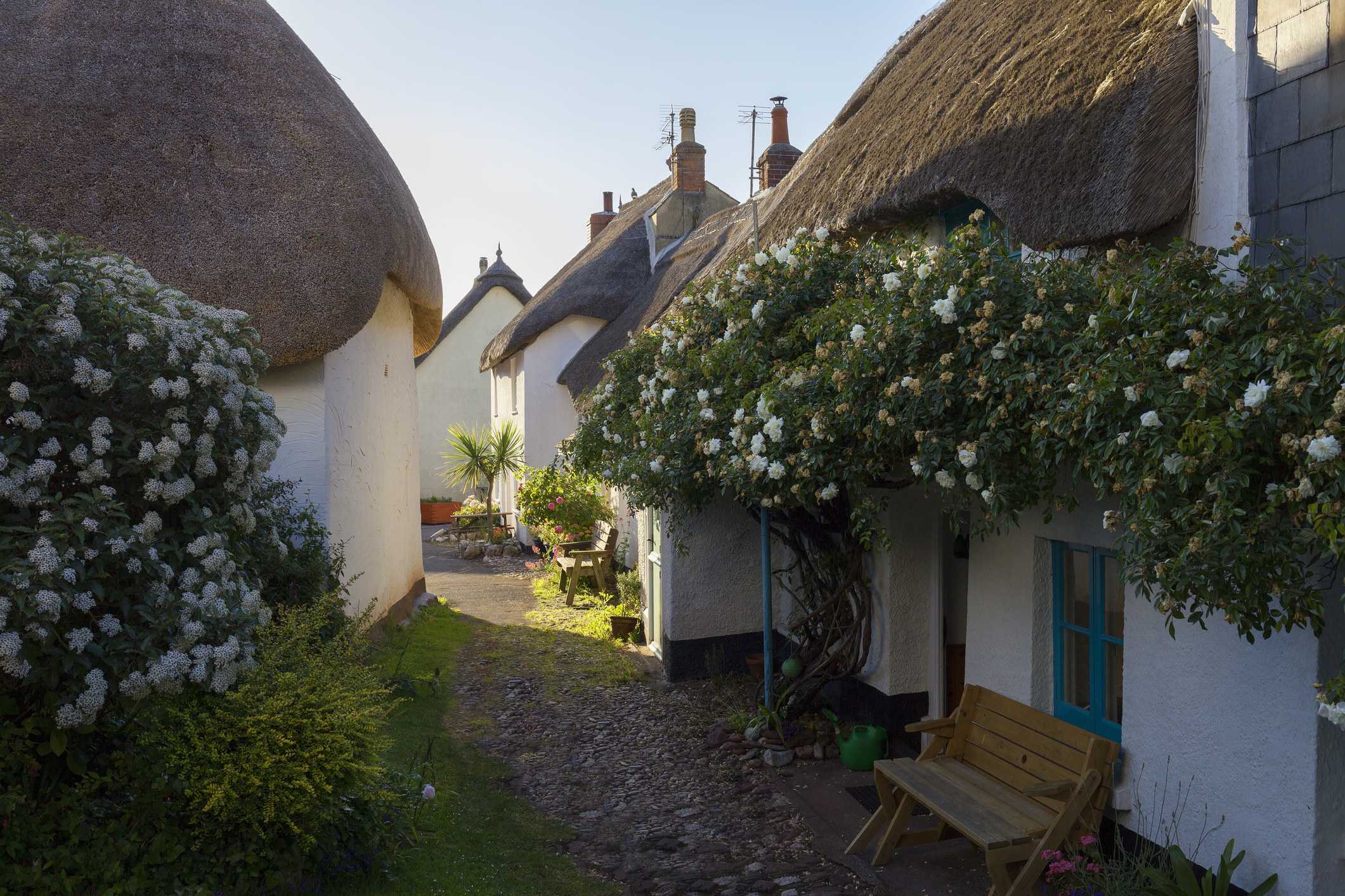 A group of cottages with thatched roofs in Hope Cove, Devon