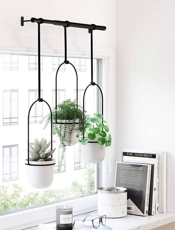 The planters are hung above a window like a curtain and filled with leafy plants