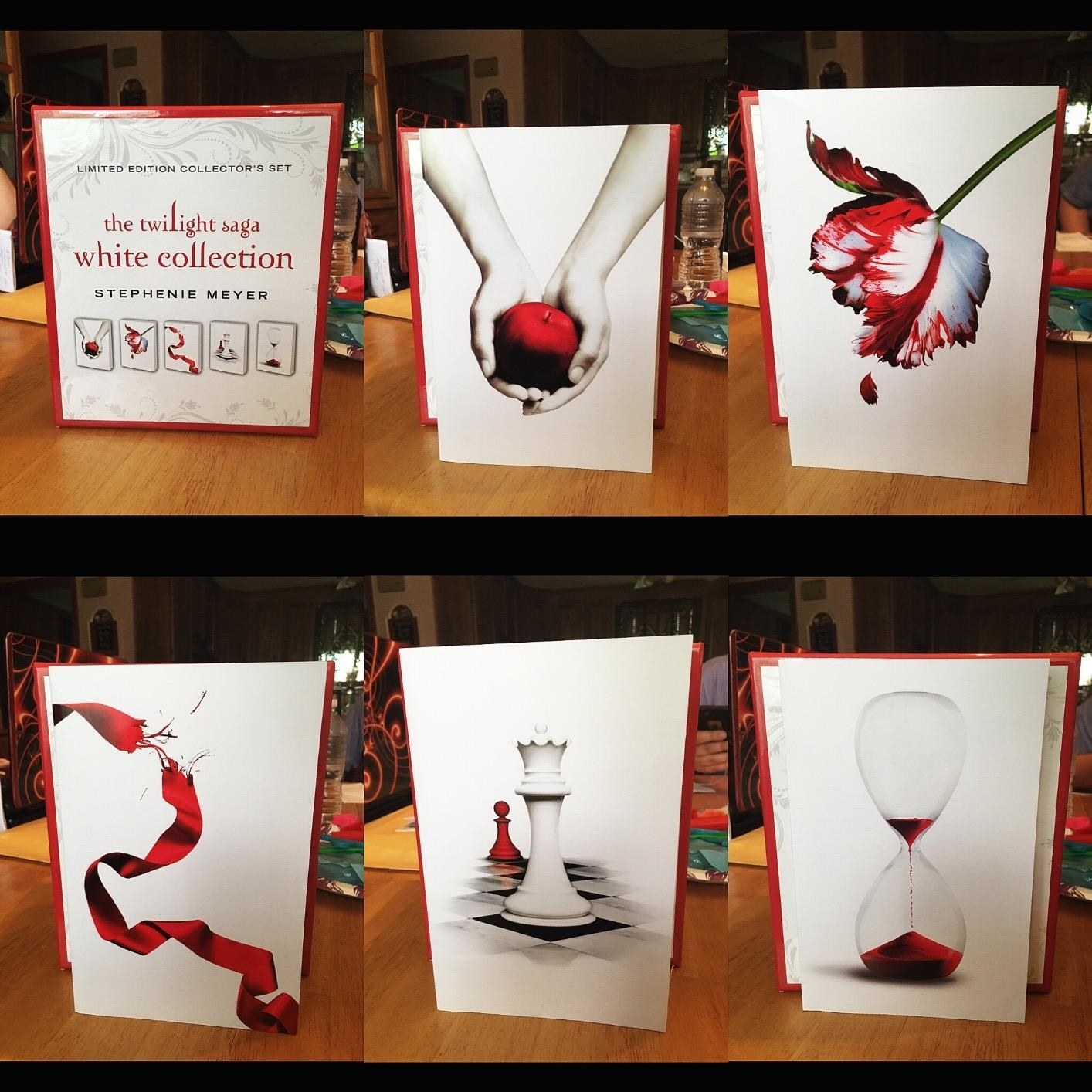 A reviewer photo of each of the books
