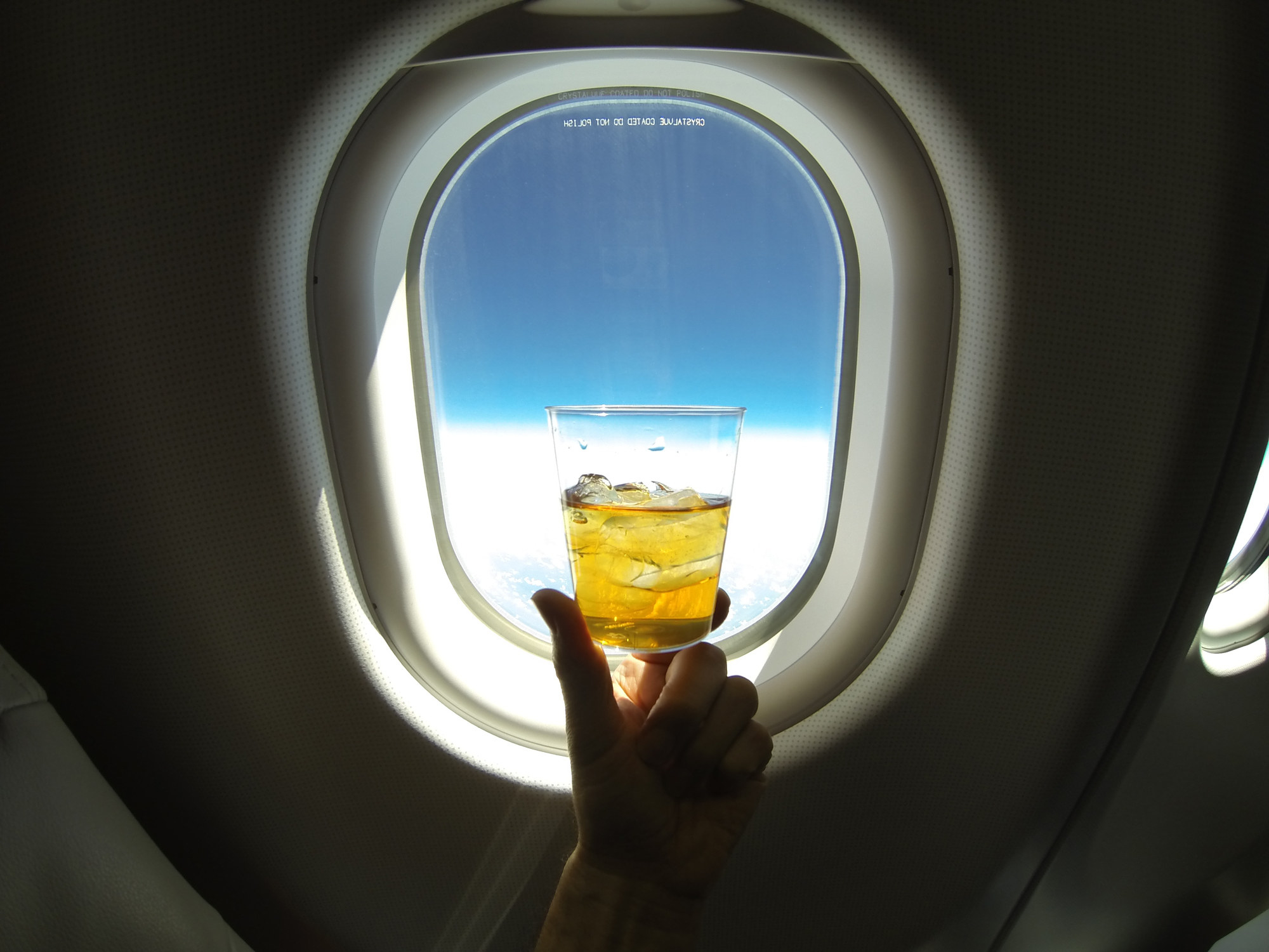 cocktail being held up by in front of an airplane window