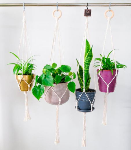 White macrame hangers carrying gold, blush, dark blue, and magenta plant pots