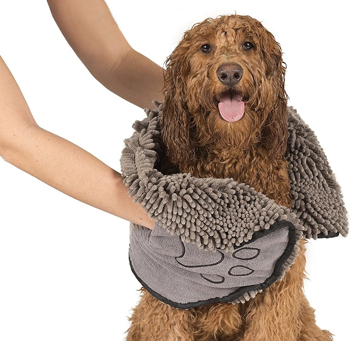 Model's hands using the shaggy towel to dry off a dog