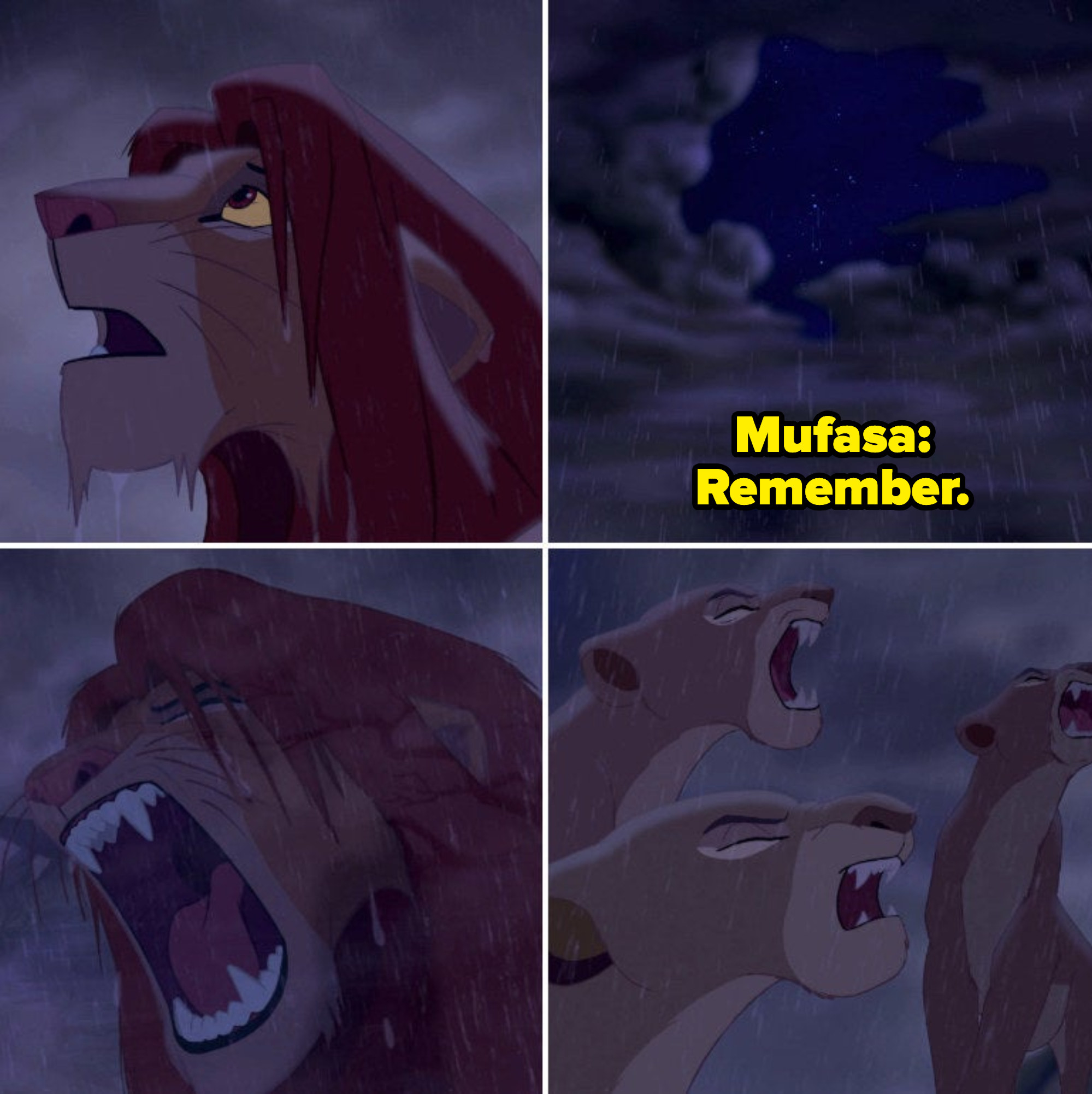 Simba looking up at the sky as the clouds part, hearing Mufasa's voice. He finally feels confident as the new king of Pride Rock; he roars, and the rest of the pride roars with him