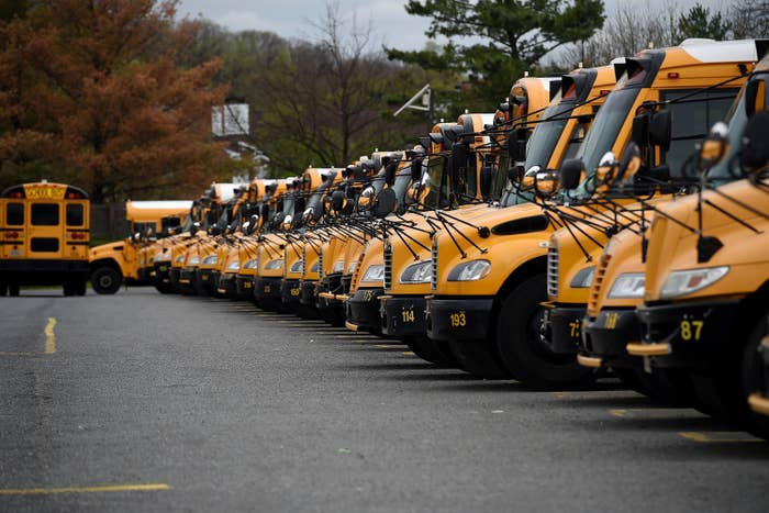 A row of parked school buses