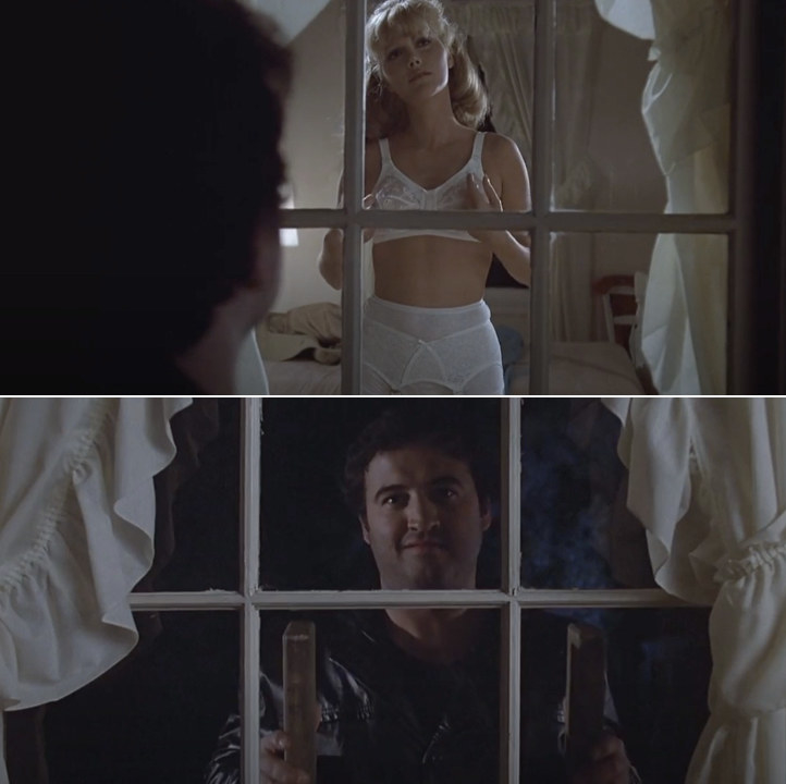 Bluto spying on a girl in her underwear through the window; he's standing on a ladder outside of her window