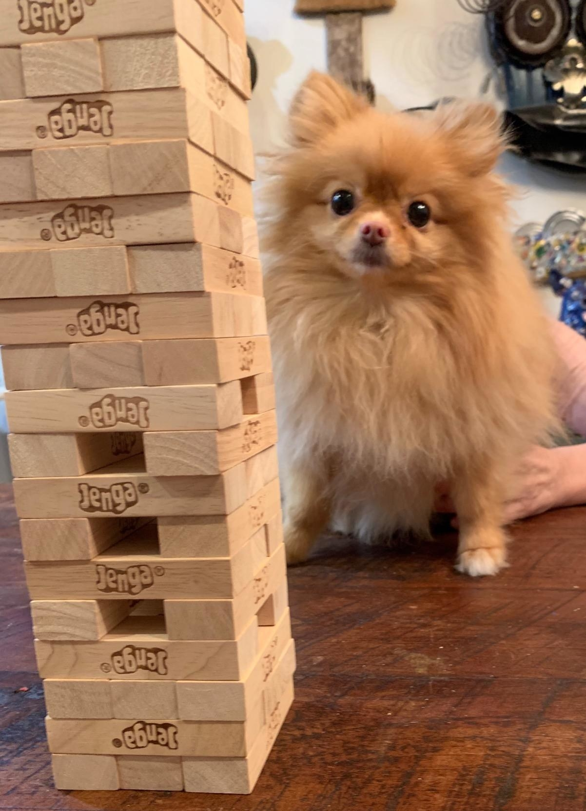 Reviewer photo of their Jenga stack