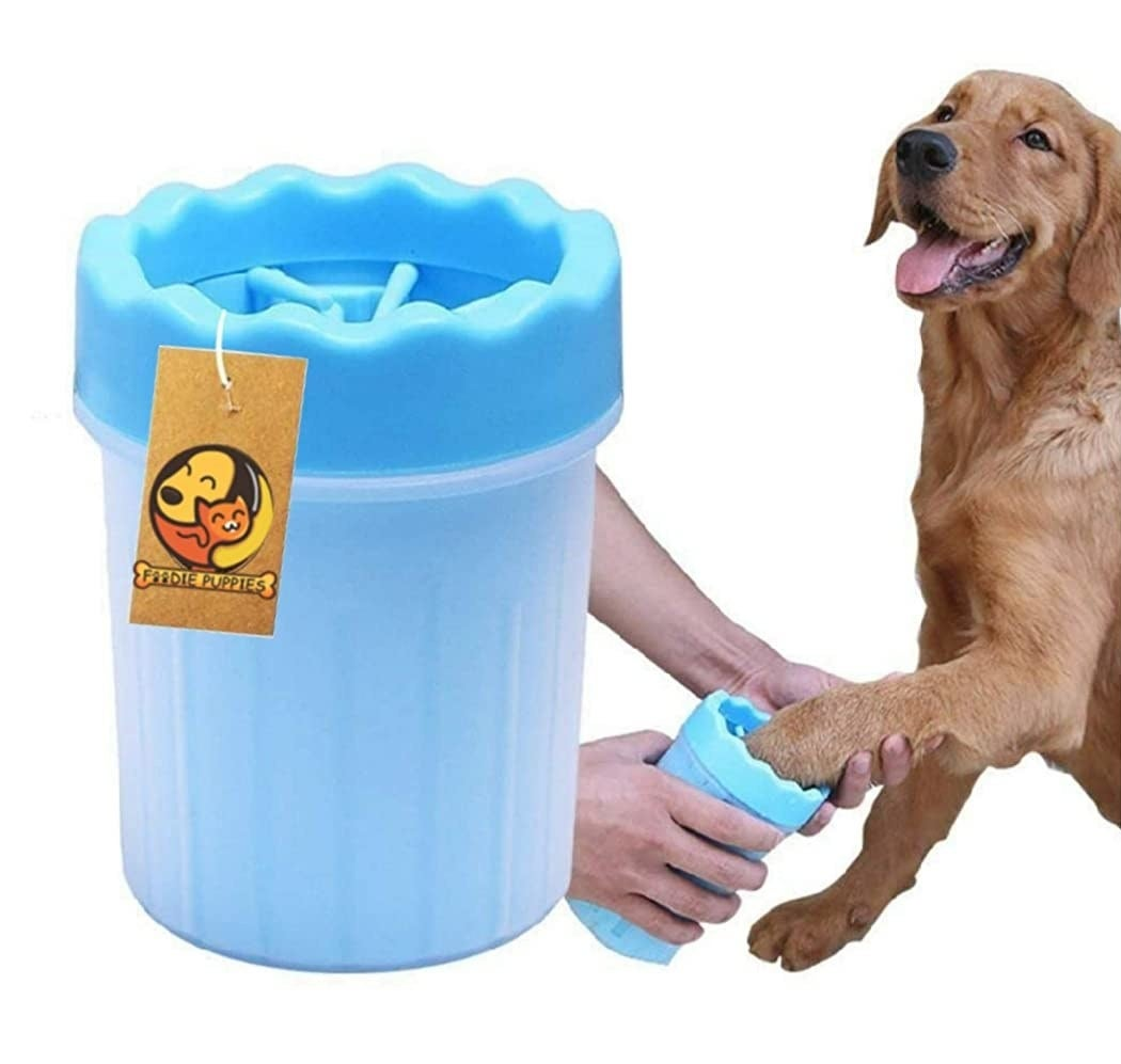 A dog with its paw being cleaned in the cup
