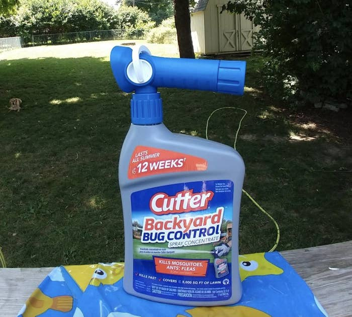 """reviewer photo of the large bottle labeled """"Cutter backyard bug control"""""""