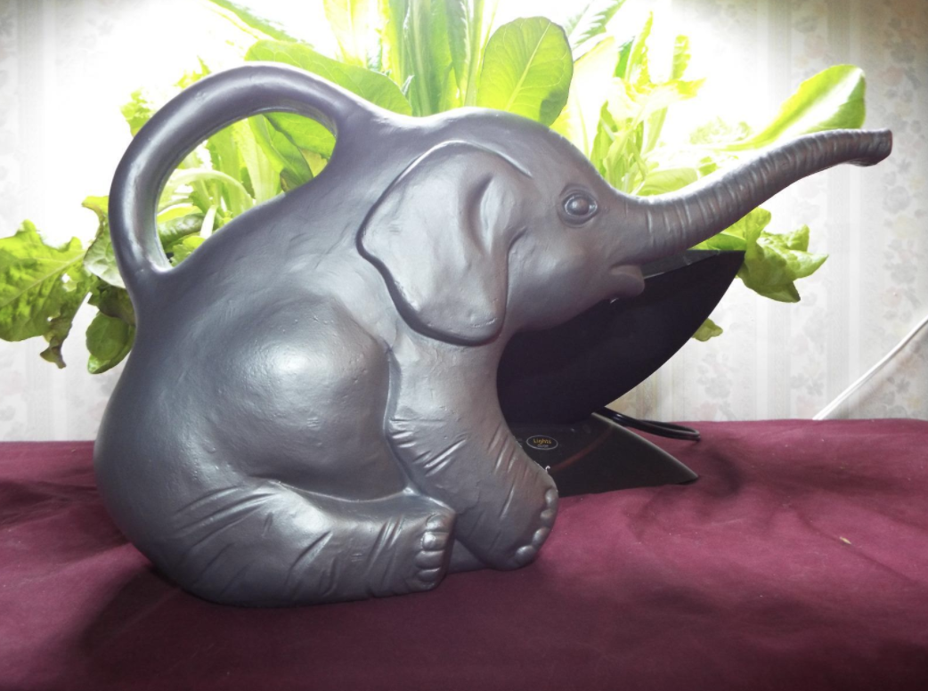 gray elephant watering can