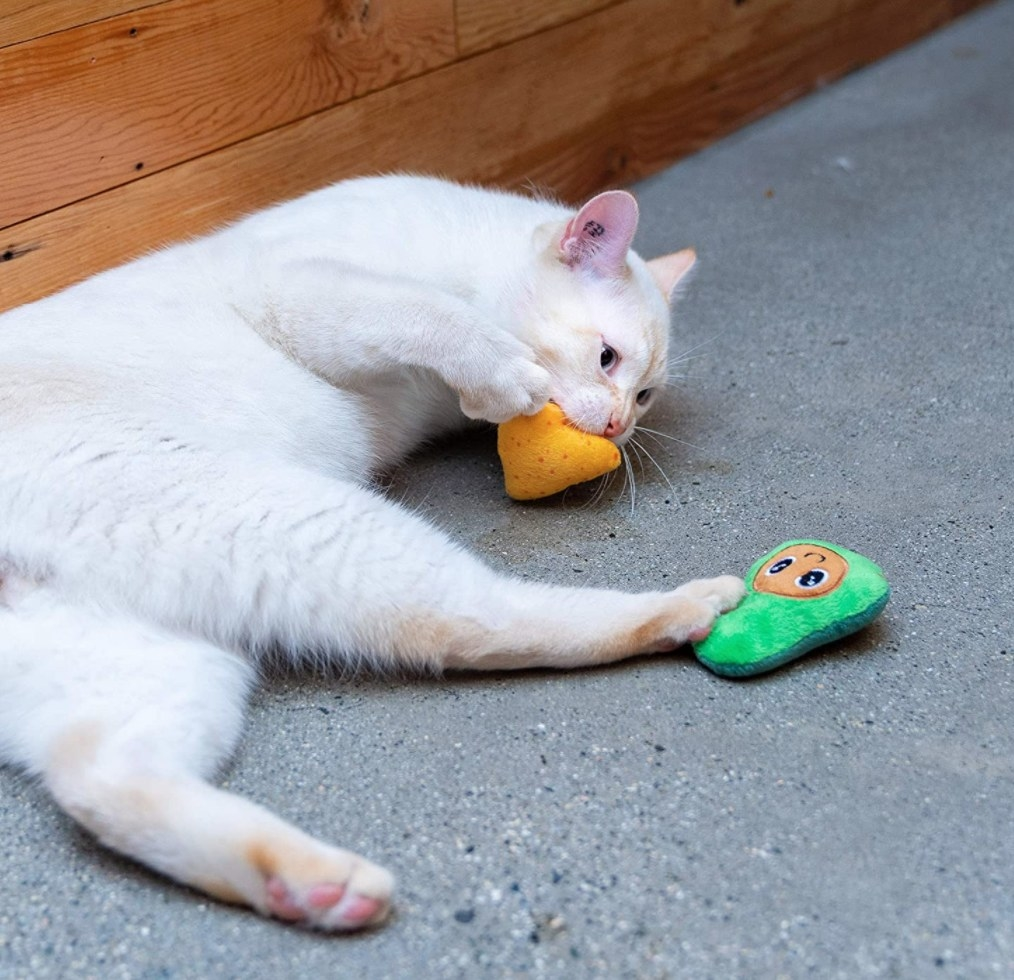 A white cat playing with a yellow chip and green guac toy