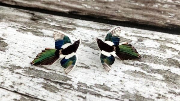 Stud earrings that look like a Magpie bird with black, white, blue, and green colors on it