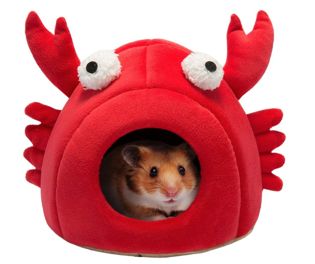 A Guinea pig sitting inside a plush red crab-shaped bed