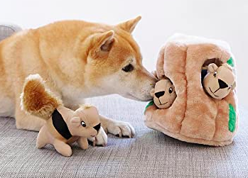 Tan dog sniffs a plush hide-and-seek toy filled with squeakers and soft squirrels