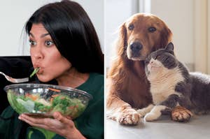 """On the left, Kourtney Kardashian eats a salad out of a large plastic bowl on """"Keeping Up With the Kardashians,"""" and on the right, a golden retriever and lies on the floor and a cat snuggles up next to it"""