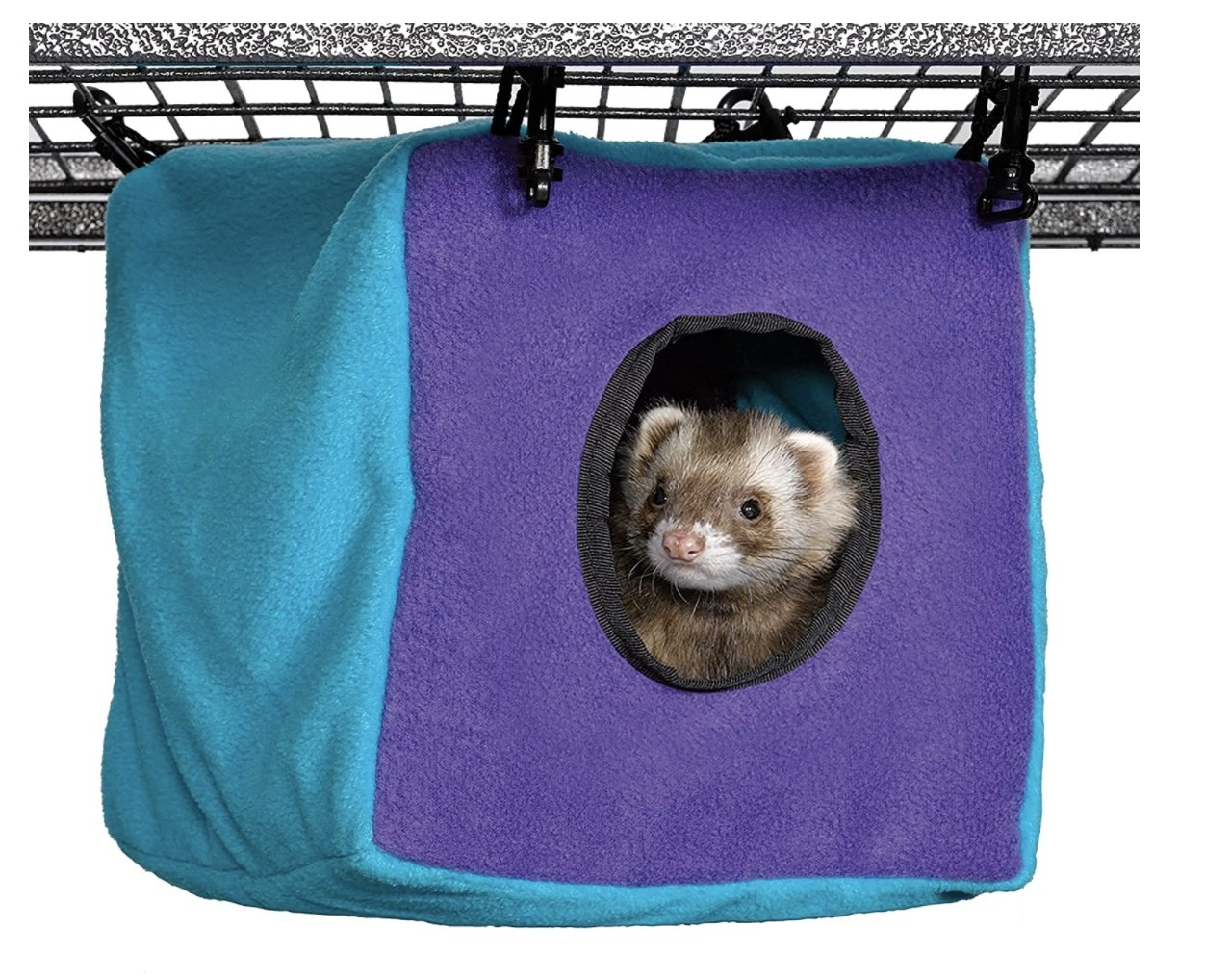 A ferret hanging out in a teal and purple plush cube