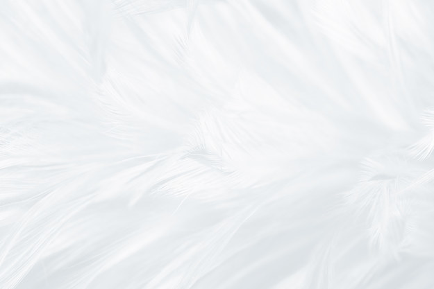 text reads: type feather