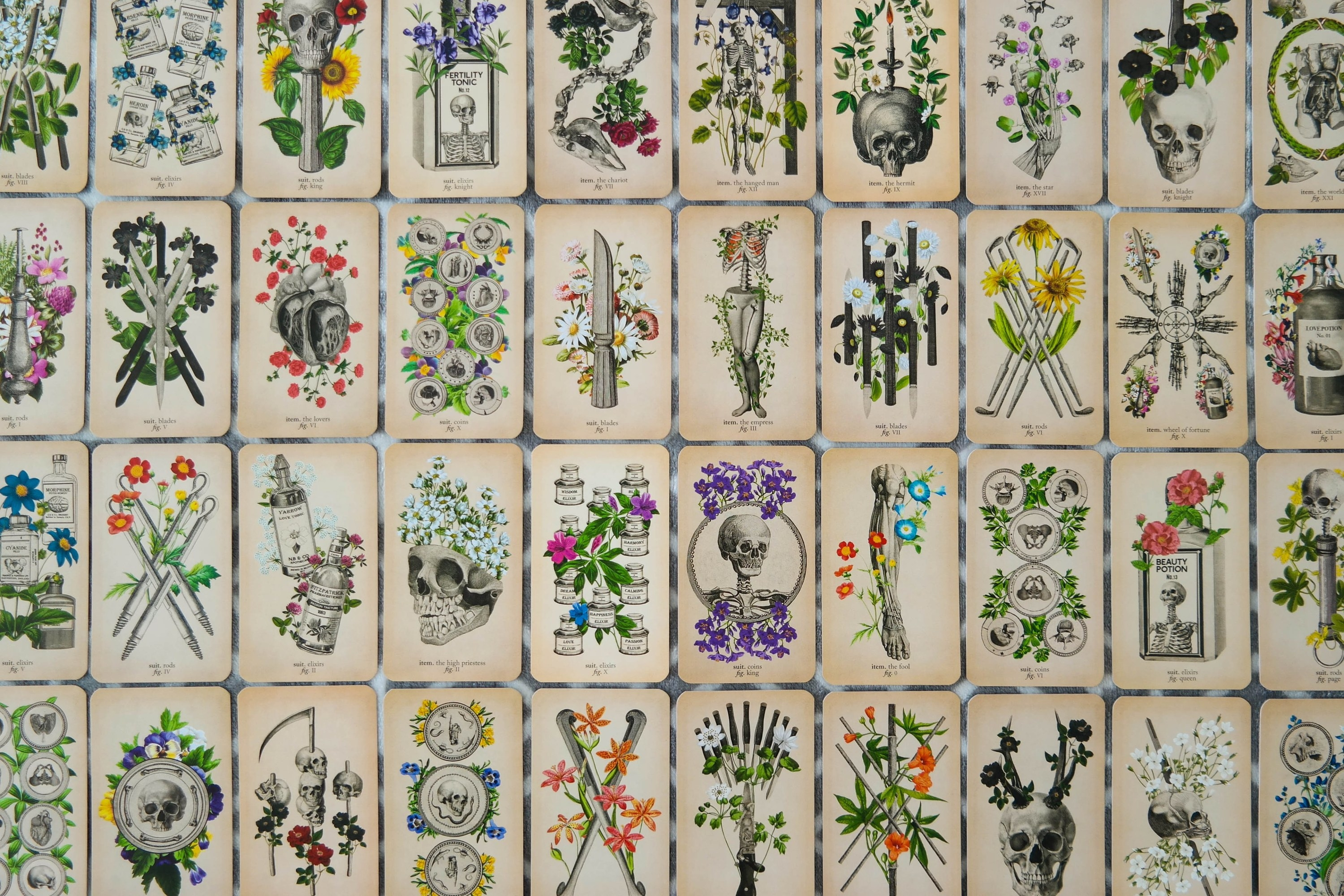 The cards of the Antique Anatomy tarot deck lay face up in a grid