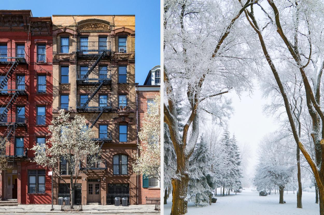 Favorite Season Design Apartment Quiz