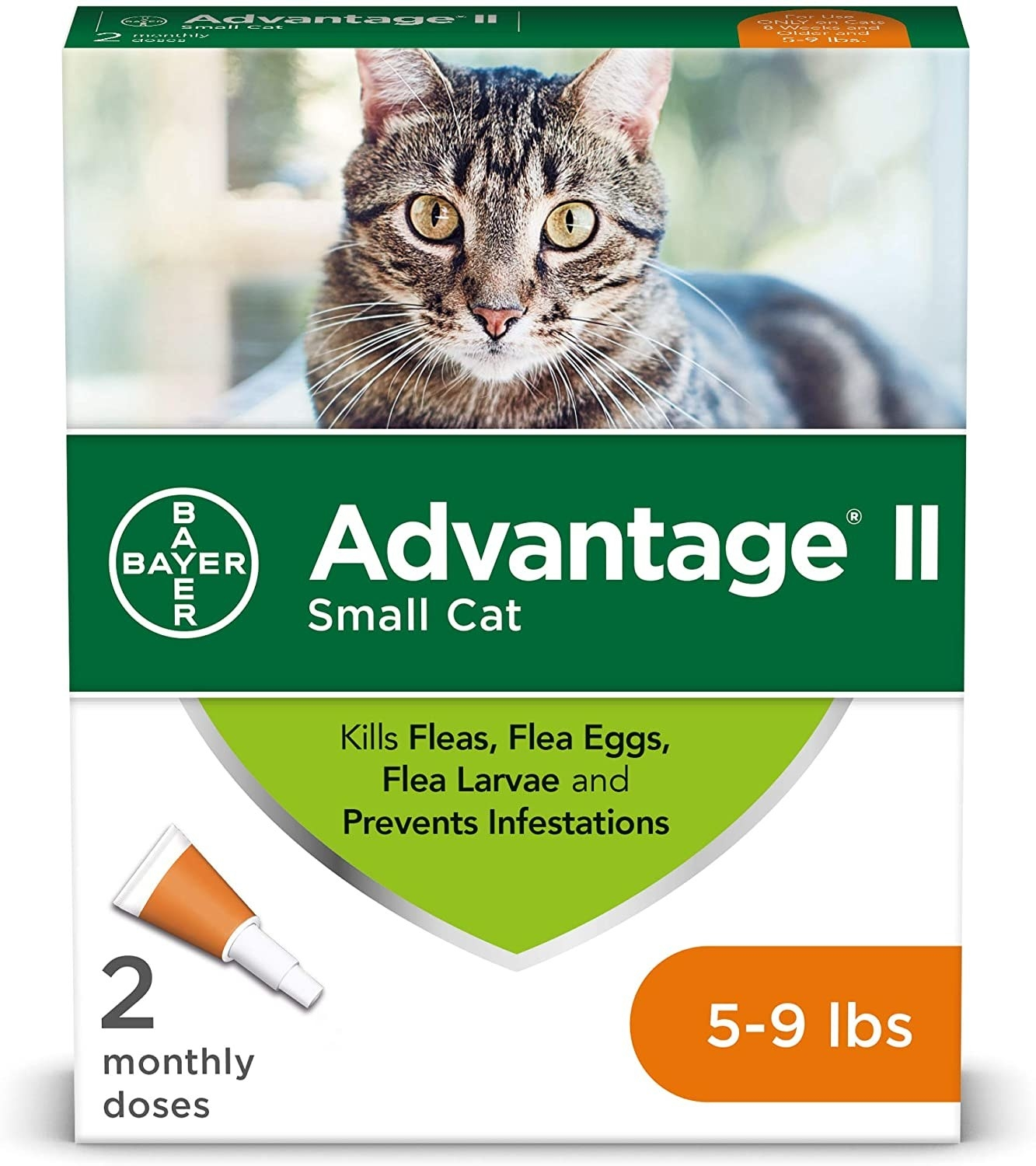 Green and white packaging of flea prevention meds for cats